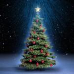 Iglesia establece un récord Guinness por distribuir árboles de Navidad para evangelizar
